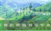 尚仁诗歌网官网_尚仁诗歌网官方网站简介