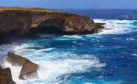 北岛的诗歌赏析-岛