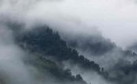 现代诗歌原创-走出迷雾之黎明前的黑暗