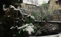 尚仁:二零一八年一月二十五日魔都雪景随拍