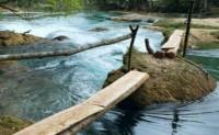 关于渡河的现代散文精选-渡河
