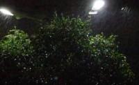 描写雨夜的现代诗歌叶雨投稿作-雨夜