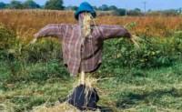 描写稻草人的现代诗歌原创