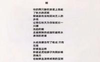 诗歌视频-剑