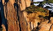 [廖志刚] 诗歌-仰天岗的裂石、竹山路的树、孔目江的风