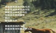 尚仁诗歌-马(视频版)