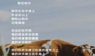 尚仁诗歌-鲜花和牛(视频版)