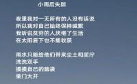 尚仁诗歌-小雨后失踪(视频版)
