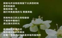 尚仁诗歌-我是一颗梨(视频版)