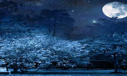 【刘晓东】原创诗歌投稿作品外七首