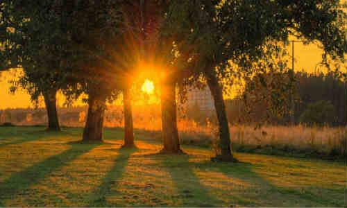 歌:阳光打在地上-海子的诗