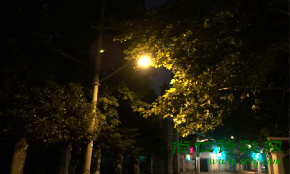 静物实拍-灯