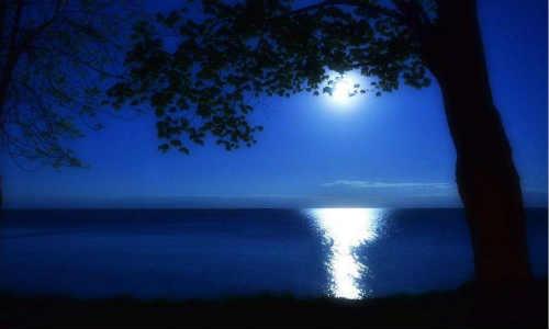 月光-海子诗歌精选