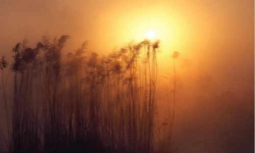 关于秋阳秋风的现代诗歌