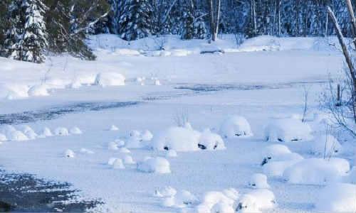 秦嘉旭原创诗歌-一场雪、同学情、你有一张好陌生的脸
