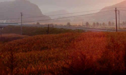 胡昌盛原创现代散文诗歌两首-修炼成花仙、故乡情