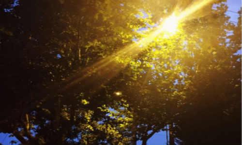亚君原创现代诗歌投稿作-路灯下的老妇人