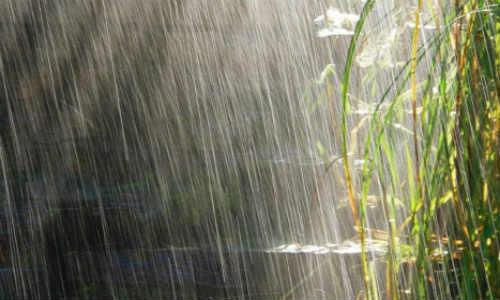 亚君现代诗歌投稿作品-雨
