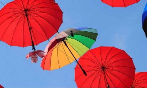 玩子现代诗歌-我没带伞的奇思与妙想