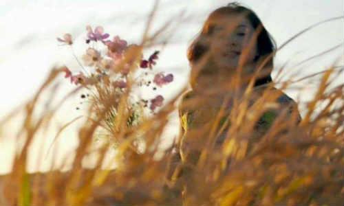 胡安俊现代诗歌投稿作品两首-一个女孩、变换