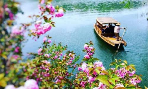 杨佳利现代诗歌投稿作品-你的柔情,融进了谁的相思