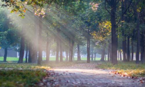 雨诗曼现代诗歌投稿作品两首-寄青春的你、诗的模样