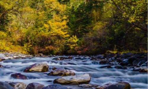 关于描写水源的环保水源的现代散文诗歌