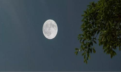尚仁的诗歌-家乡的月亮
