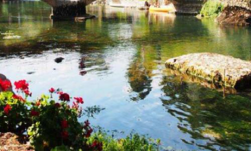 描写鱼与河的诗歌-鱼与河