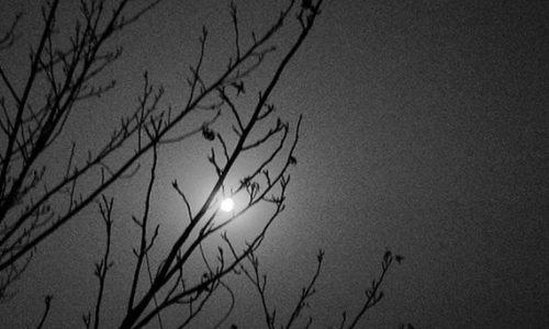 [贺涛] 未眠之夜、一